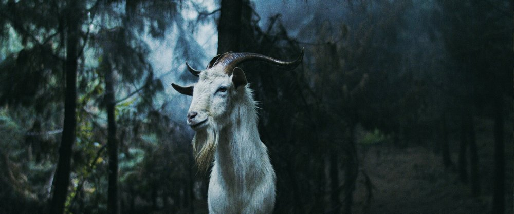 Trailer For New Cult Folk Horror Luz: The Flower Of Evil